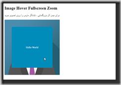 Image Overlay Zoom