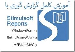 StimulSoftReporter